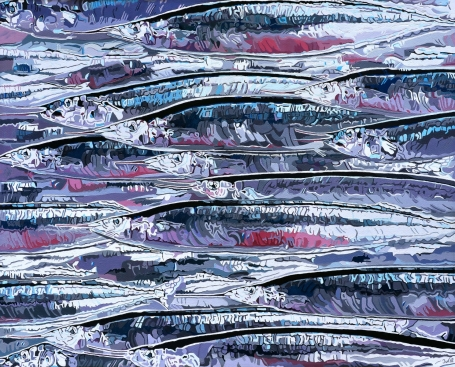 Atlantic-Saury